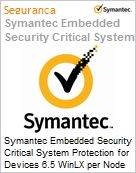 Symantec Embedded Security Critical System Protection for Devices 6.5 WinLX per Node Bndl Standard License Express Band E [250-499] Essential 12 Meses (Figura somente ilustrativa, não representa o produto real)