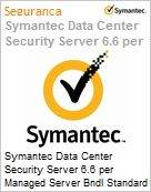 Symantec Data Center Security Server 6.6 per Managed Server Bndl Standard License Express Band E [250-499] Essential 12 Meses  (Figura somente ilustrativa, não representa o produto real)